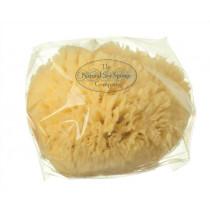 Wool Sea Sponge